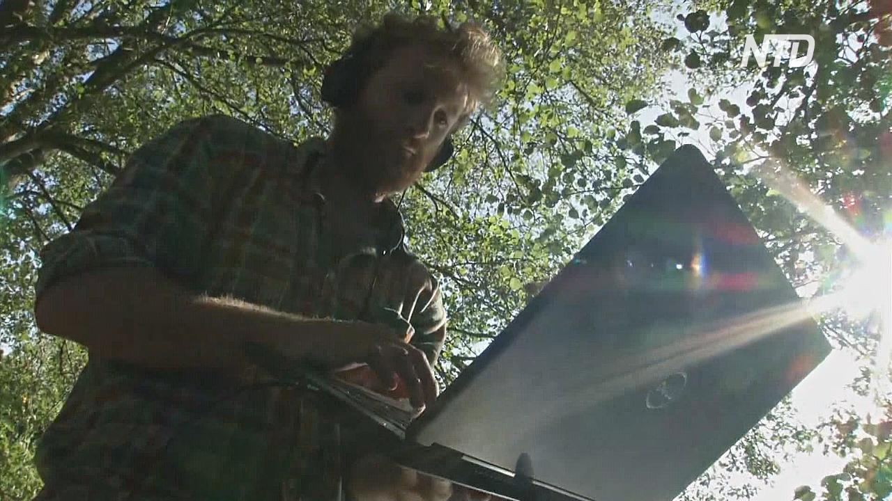 Голос пруда: учёный изучает водоёмы с помощью звука