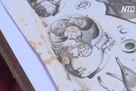 В Иерусалиме показали книги, которые могли вдохновить Леонардо да Винчи