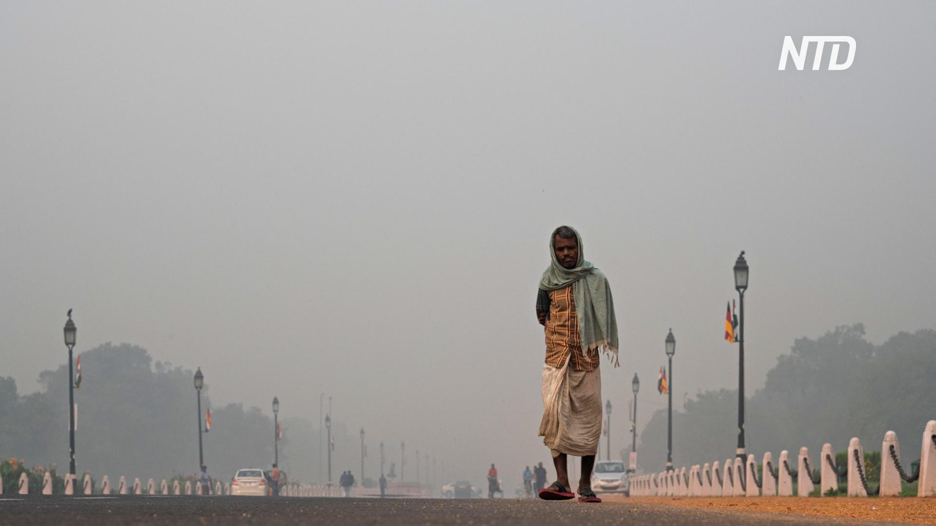 Нью-Дели заволокло дымом: власти закрыли школы на два дня
