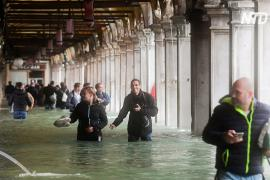 Венецианцы не собираются покидать город после рекордного наводнения