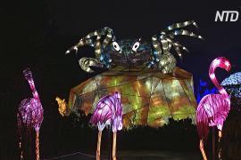 Светящиеся крабы, черепахи и фламинго поселились в Саду растений Парижа