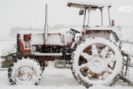 Аномальная погода: север Испании завалило снегом