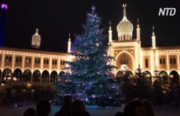 Рождественские ёлки: как столицы Европы готовятся к празднику