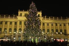 Чем привлекает гостей рождественская ярмарка Шёнбрунн в Вене