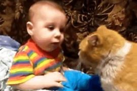 Кошка знает, как уложить ребёнка спать. Смешное видео