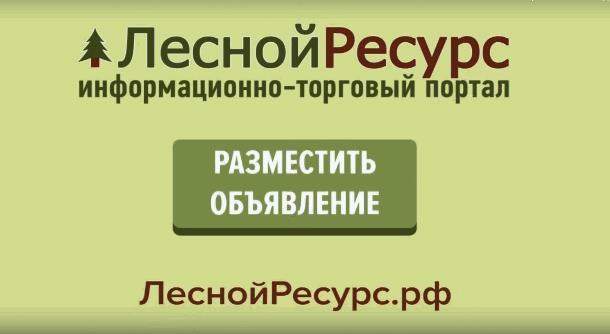 Возможности портала «ЛеснойРесурс.РФ»