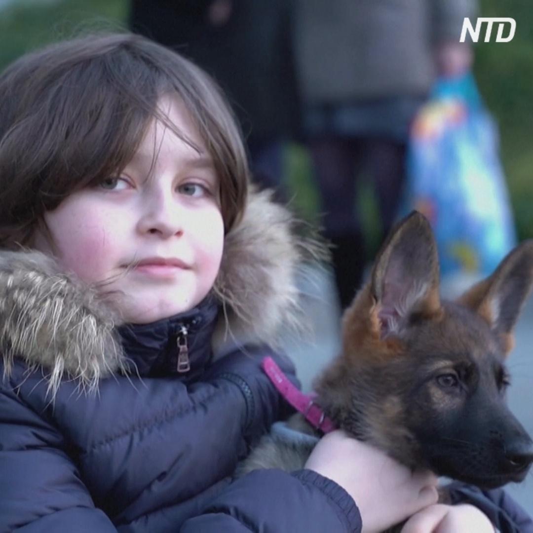 9-летний бельгиец скоро закончит университет