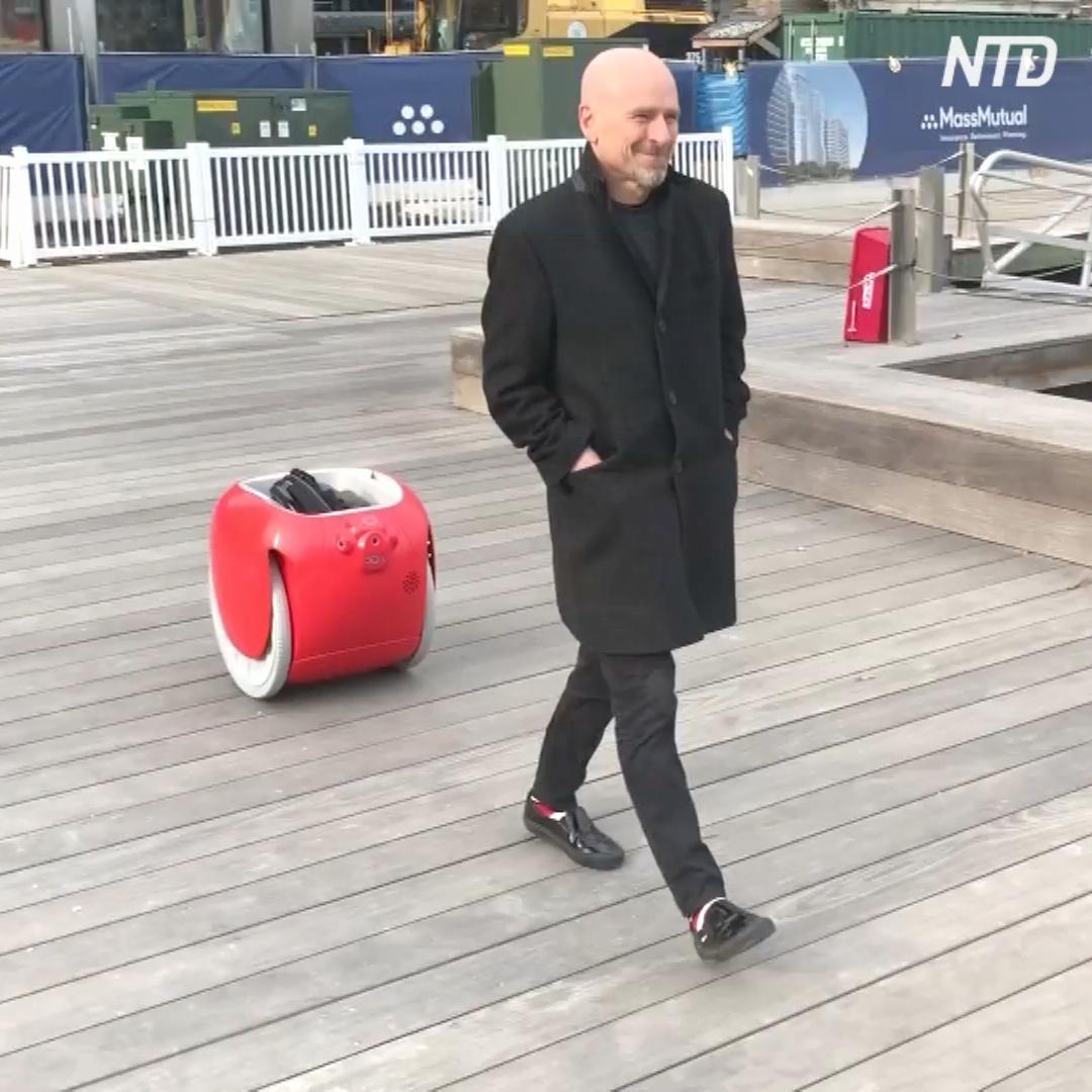 Теперь роботов для перевозки багажа можно купить в магазинах