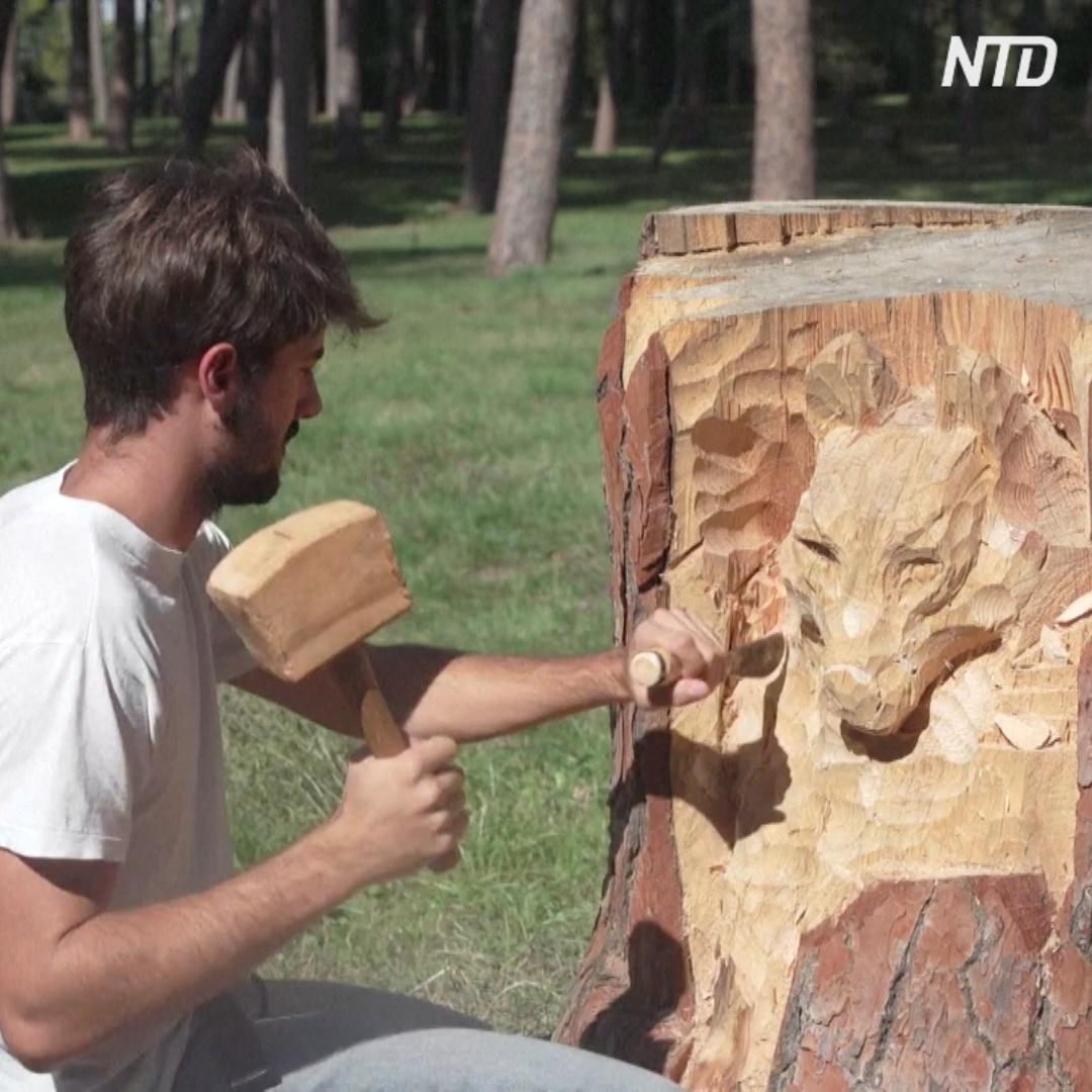 Как пни в руках мастера превращаются в скульптуры