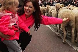 Тысячи овец вместо машин: древний путь через Мадрид