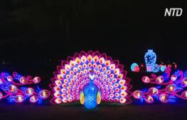 Скульптуры из шёлка и стали: фестиваль фонарей в Эстонии