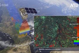 Британские учёные ищут плавучий пластик из космоса