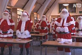 Ёлки и Санта-Клаусы: как мир готовится к Рождеству