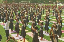 85 000 индийских школьников массово занимались йогой
