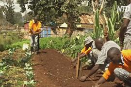 Реабилитация трудом: заключённых Кении учат разным профессиям