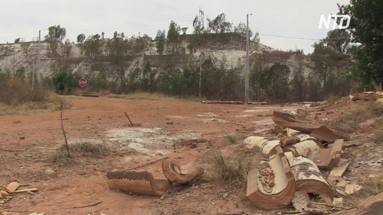 Последствия золотодобычи в ЮАР: грязные воздух и почва и больные люди