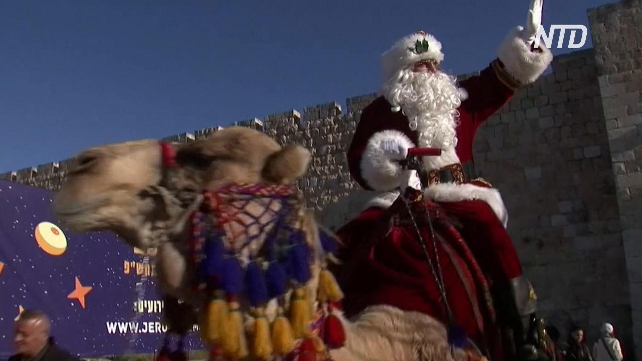Как Санта на верблюде раздавал ёлки в Иерусалиме