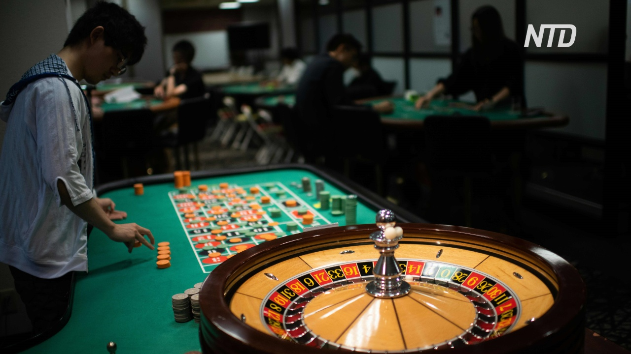 казино вулкан играть нарды на деньги