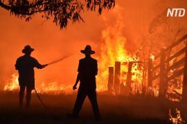 Лесные пожары охватили обе стороны Австралии