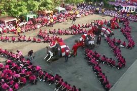 Слоны-Санты поздравили с Рождеством тайских школьников