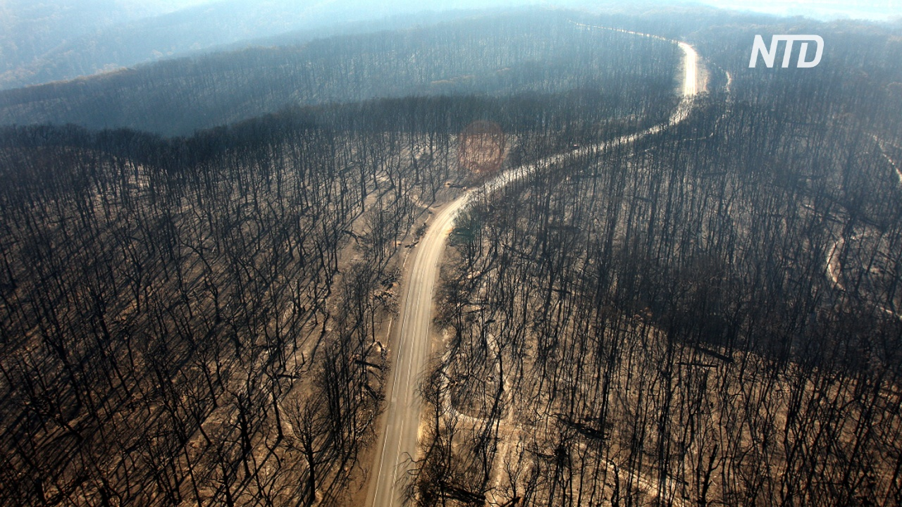 В пожарах в Австралии погибли ещё трое
