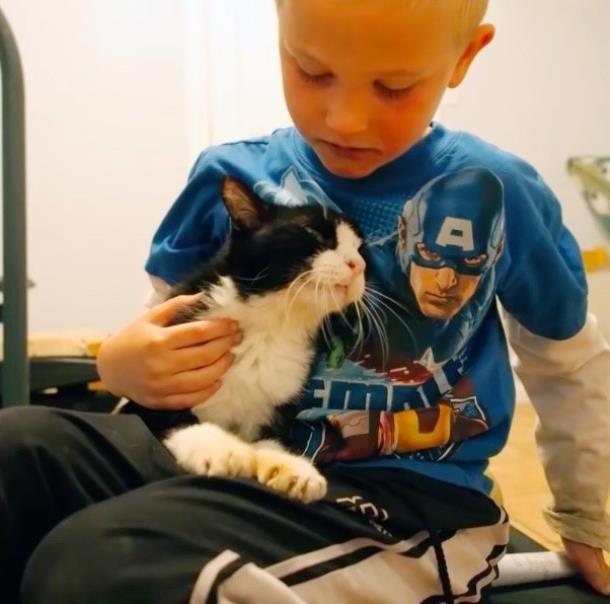 2 1 - 20-летний кот из приюта очаровал новую семью