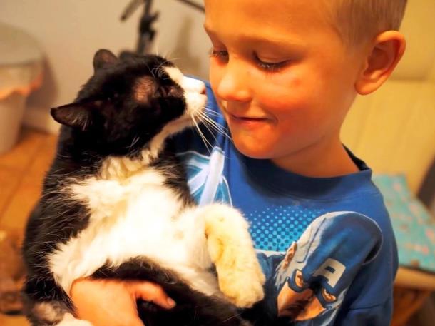 3 - 20-летний кот из приюта очаровал новую семью