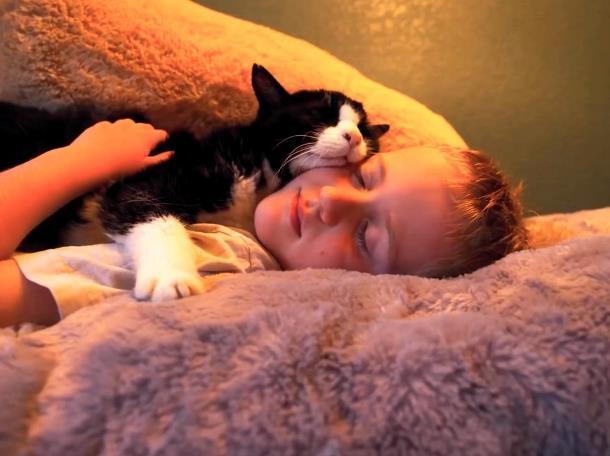 4 - 20-летний кот из приюта очаровал новую семью