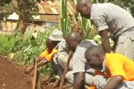 Экс-заключённым Кении помогают стать фермерами, скотоводами или плотниками
