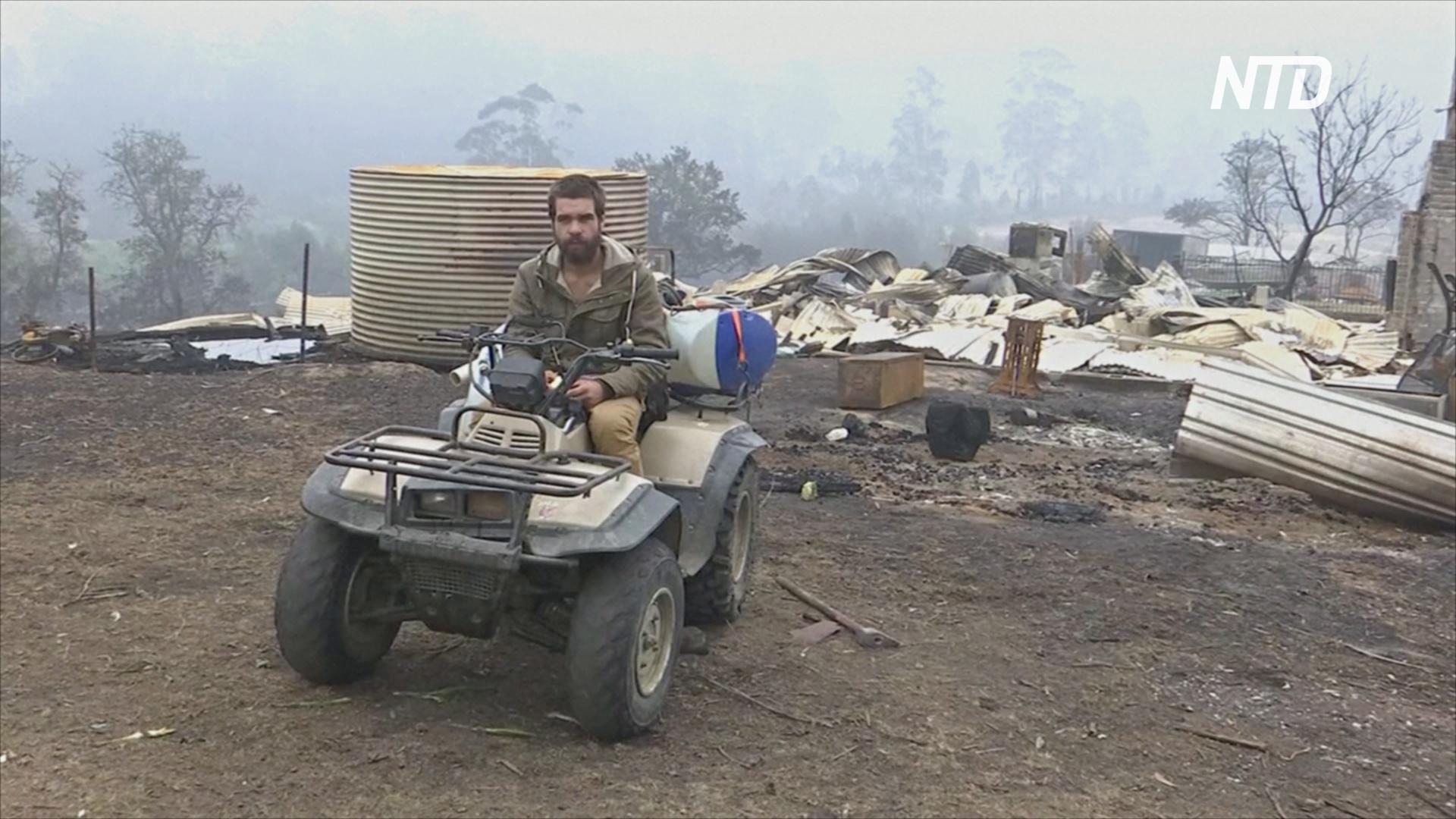Австралиец из-за пожаров потерял ферму со стадами оленей и овец