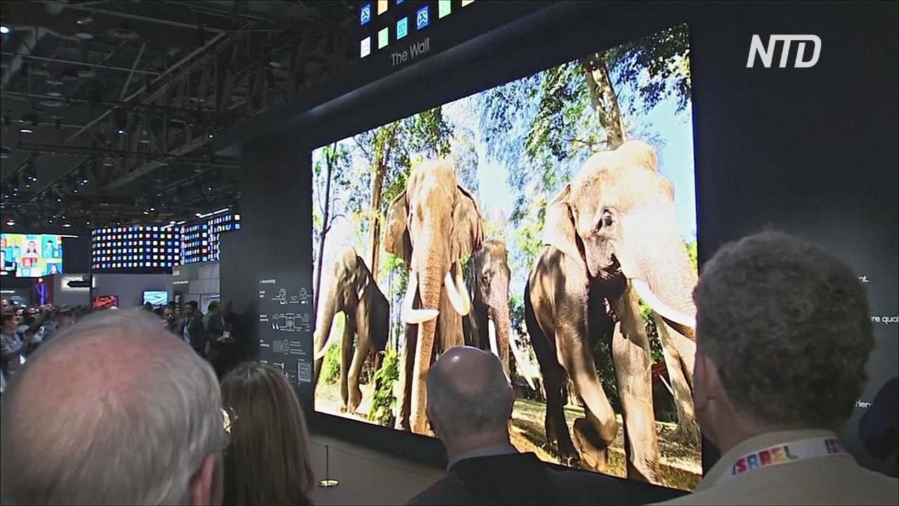 Вращающиеся экраны и телевизор во всю стену: новинки на CES