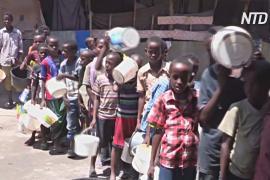 ООН: зимбабвийцам угрожает голод из-за засухи и экономического кризиса