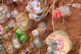 Кирпичи из пластиковых бутылок: как в ЮАР избавляются от отходов
