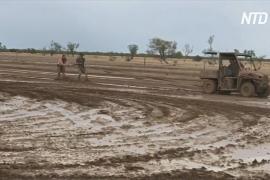 Повод для радости: в Сиднее – самый мокрый день за много месяцев