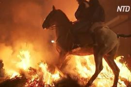 Фестиваль «Люминариас»: как лошади бегут через костры