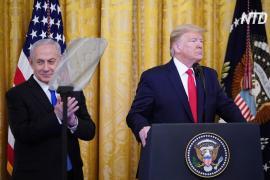 Дональд Трамп представил мирный план по Ближнему Востоку, палестинцы его сразу отклонили