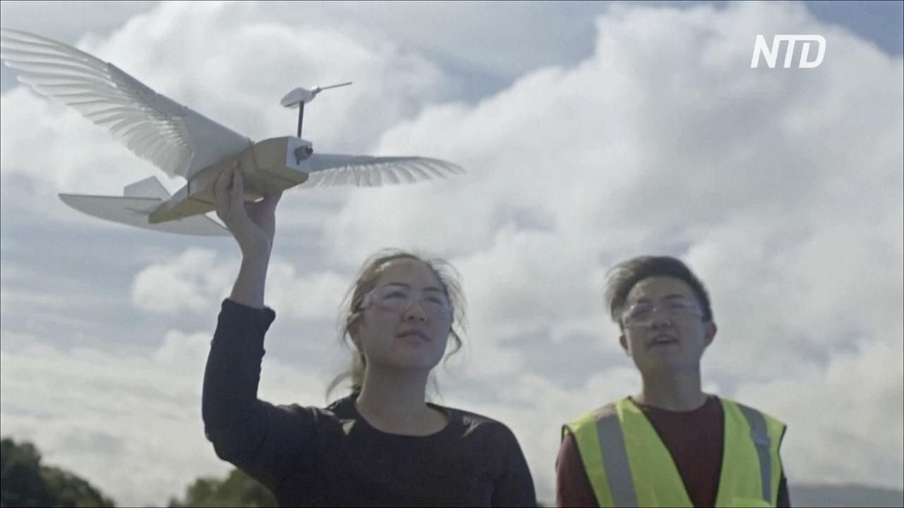 Летающего робота-голубя тестируют в США