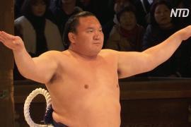 Борцы сумо поприветствовали новый год ритуальным танцем