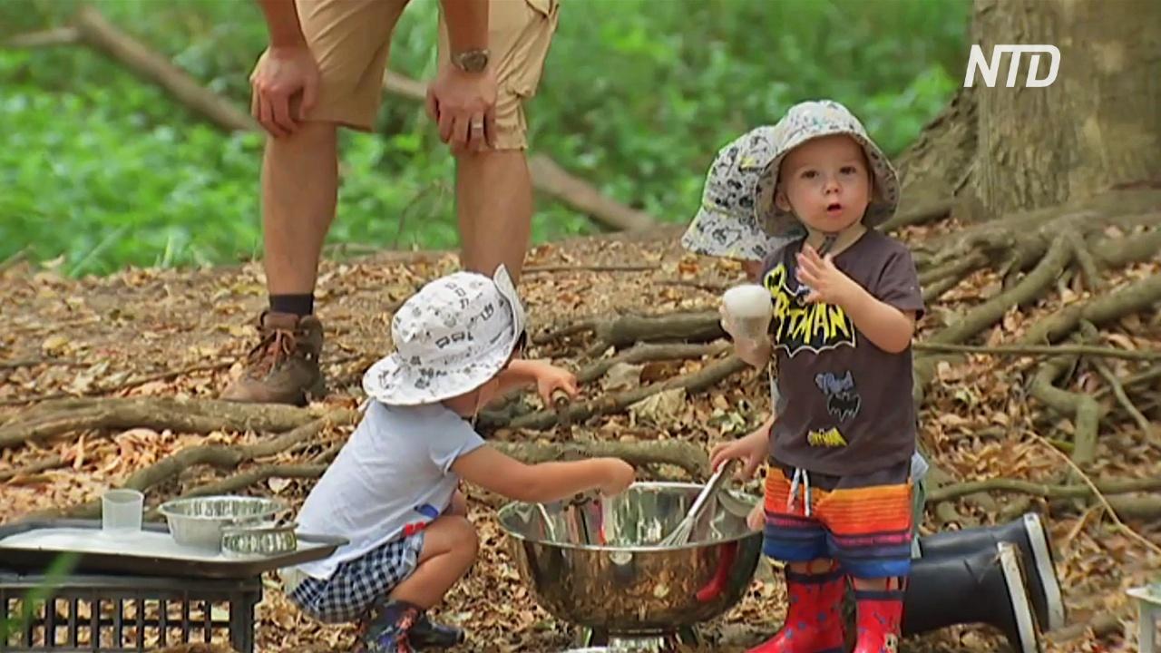 Австралийских малышей всё чаще отдают в лесные детсады