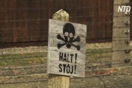 Бывшая узница Освенцима: «Мы слышали, как дети кашляют, плачут и задыхаются»