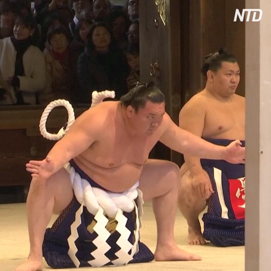 Как борцы сумо приветствуют Новый год