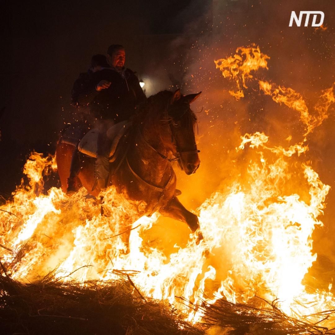 Как лошади в Испании бегут через костры