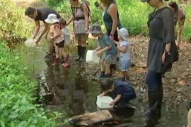 Лесные детсады в Австралии: грязь, вода, лягушки и пауки