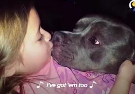 Маленькая девочка поёт песню питбулю. Видео