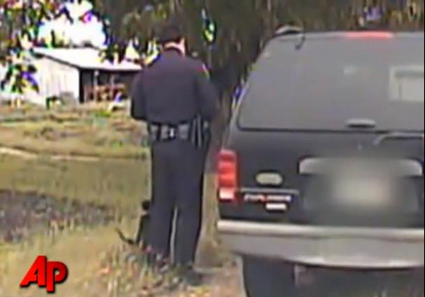Как кот мешал работе полицейского. Весёлое видео.
