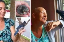 Птица помогла женщине во время смертельной болезни