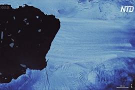 В Антарктиде от ледника откололся айсберг размером с Владивосток