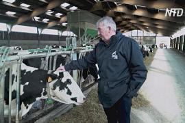 Французские фермеры боятся сокращения субсидий после «брексита»