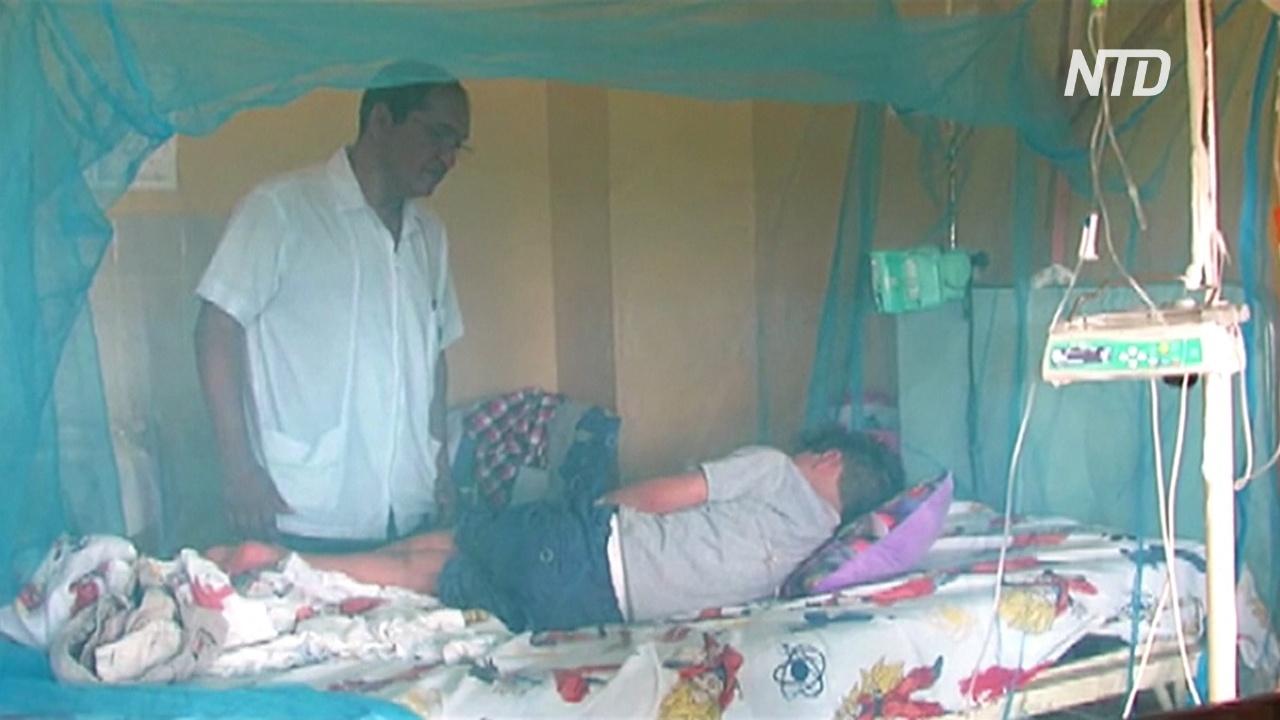 В Перу объявили ЧС из-за вспышки лихорадки денге