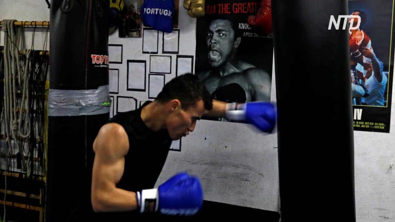 Афганский боксёр-беженец мечтает выступить на Олимпиаде-2020
